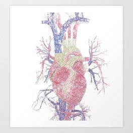 Heart (Biro) Art Print