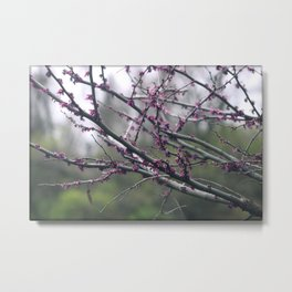 Vivid Purple Metal Print