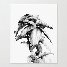 Mend Canvas Print