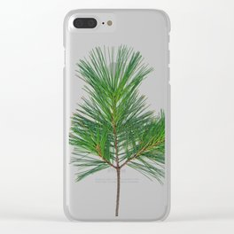 Basic Norway Pine Clear iPhone Case