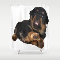 rottweiler Shower Curtains featuring Cute Rottweiler Puppy Vector by taiche
