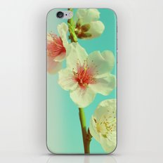 This looks like spring! iPhone & iPod Skin