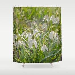 Snowdrops Shower Curtain