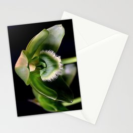 A Bit Of A Hangover Stationery Cards