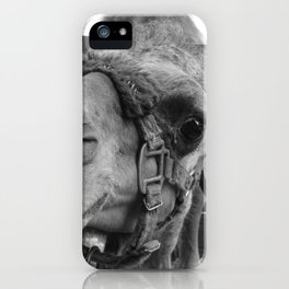 HuMp DaY part II iPhone Case