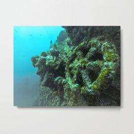 Liberty Shipwreck Bali Metal Print