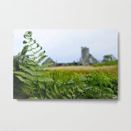 The Fern and the Abbey Metal Print