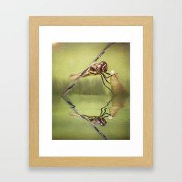 Hold On! Framed Art Print