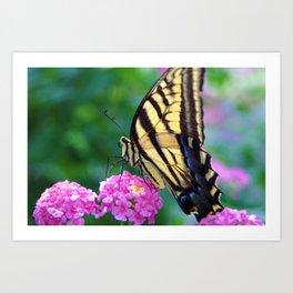 The Butterflies Garden Art Print