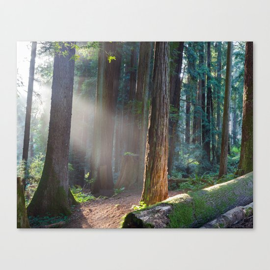 Keepers Of The Light Canvas Print