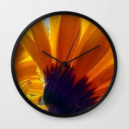 Shasta Sparkle Wall Clock