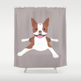 red boston terrier Shower Curtain