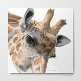 Eye Of The Giraffe Metal Print