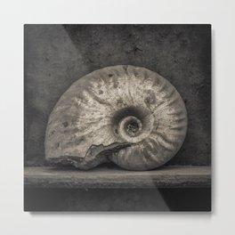 Ammonite Fossil in Sepia Metal Print