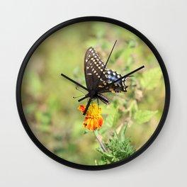 Black Swallowtail Butterfly Wall Clock