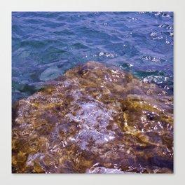 Lake Charlevoix Rocks Canvas Print