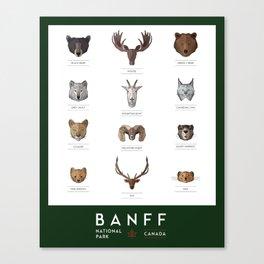 Banff National Park Animals Canvas Print
