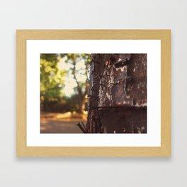 pole detail Framed Art Print
