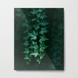 Vibrant Green Vines Hanging in a Dark Scene Metal Print
