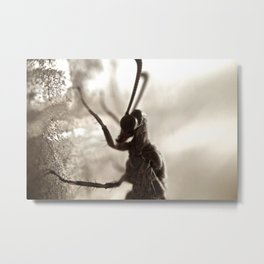 Lady's Profile Metal Print