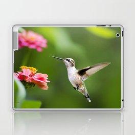 Hummingbird XI Laptop & iPad Skin