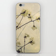 Spring Branches in White Botanical iPhone & iPod Skin