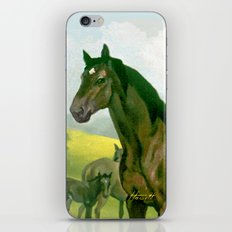 Sound Reason (CAN) - Thoroughbred Stallion iPhone & iPod Skin