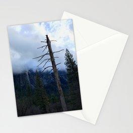 Yosemite Valley - Positives & Negatives Stationery Cards