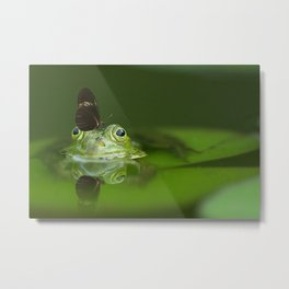 Cute frog with a Butterfly on his nose Metal Print