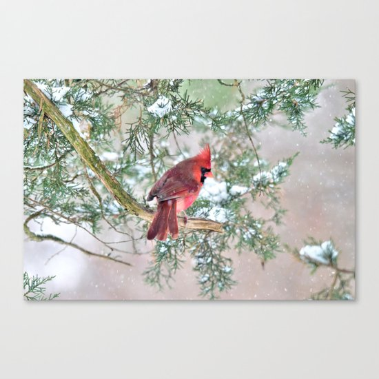Snow Day Cardinal Canvas Print