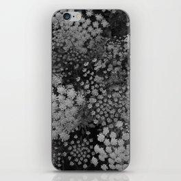 Ammi majus iPhone Skin