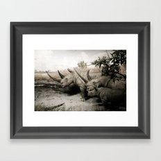 Wild Beasts Framed Art Print