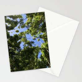 Travel Photography 41 - Bamboo Stationery Cards