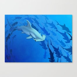 Shark week _The Hammer Canvas Print