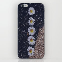 Daisy Pavement iPhone Skin