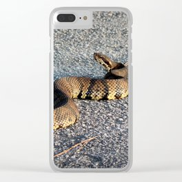 Cottonmouth Full Body Clear iPhone Case