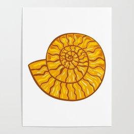 Ammonite Retro Poster