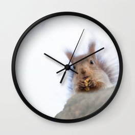 Squirrel with a walnut Wall Clock