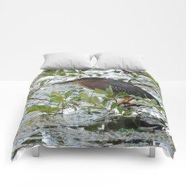 Green Heron at Lakeside Comforters