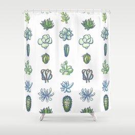 One Dozen Succulents Shower Curtain
