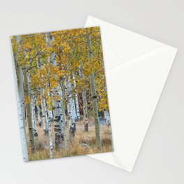 Autumn Aspen Trees Stationery Cards