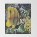 Yellow Longnose Butterfly Fish by scotthervieux