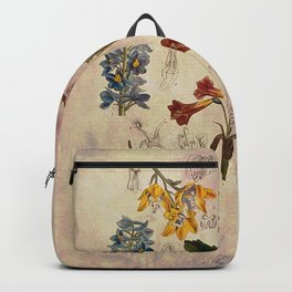 Botanical Study #1, Vintage Botanical Illustration Collage Backpack