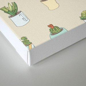 Cute Succulents Canvas Print