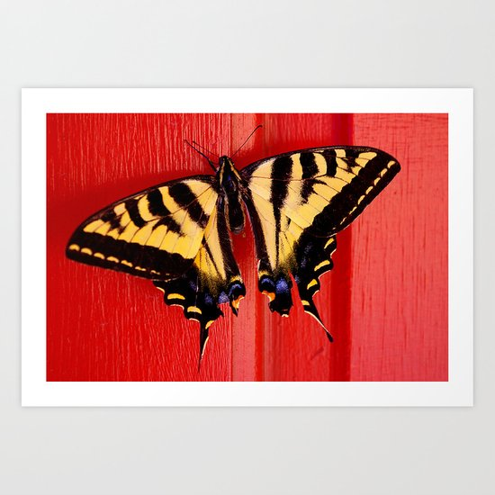 tiger swallowtail butterfly on unusual background Art Print