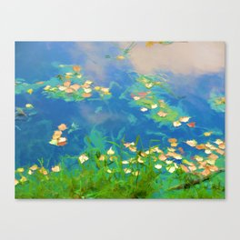 Autumn leaves on water 1 Canvas Print