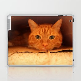 Cat in a Bag Laptop & iPad Skin