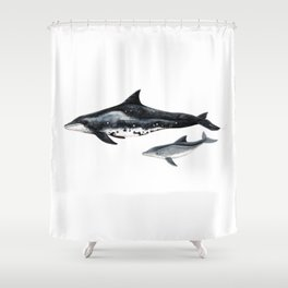 Rough-toothed dolphin (Steno bredanensis) Shower Curtain