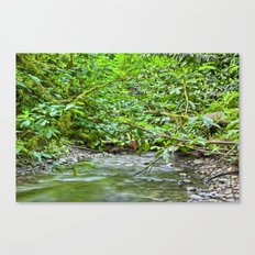Low Ceiling Canvas Print