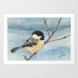 Chickadee Winter Perch Art Print